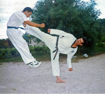 Taekwondo technique